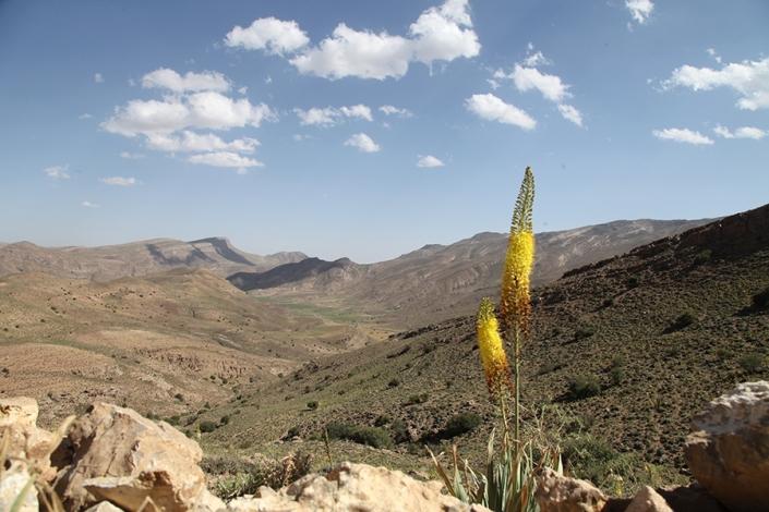 کج دره به سمت دره سیستان