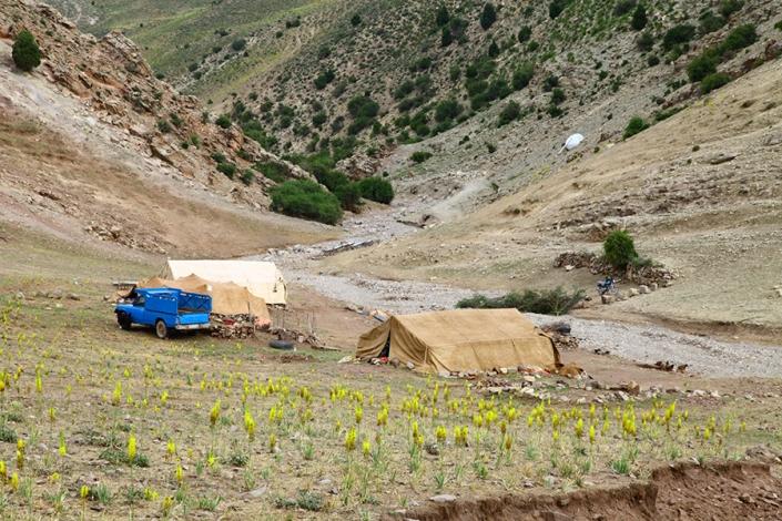 محله در فصل بهار،روستای دربیابان