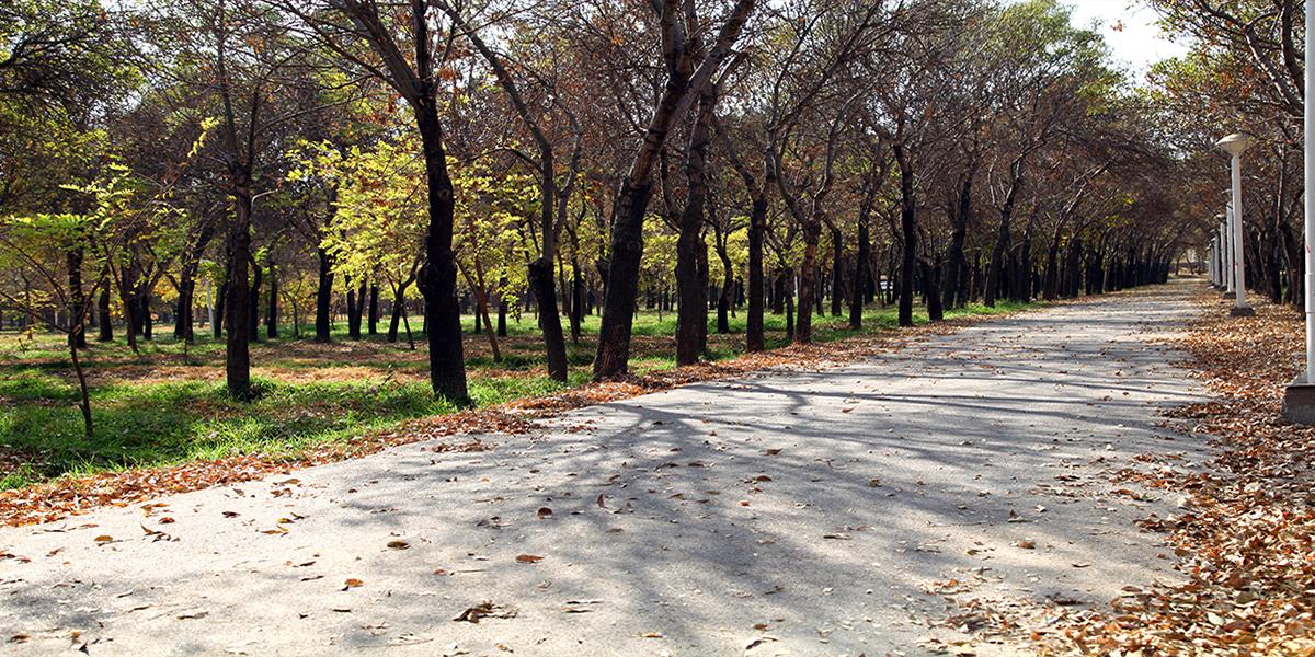 بوستان غدیر،پارک ها و بوستانهای شهر مشهد،جاذبه های گردشگری شهر مشهد،دیدنی های شهر مشهد