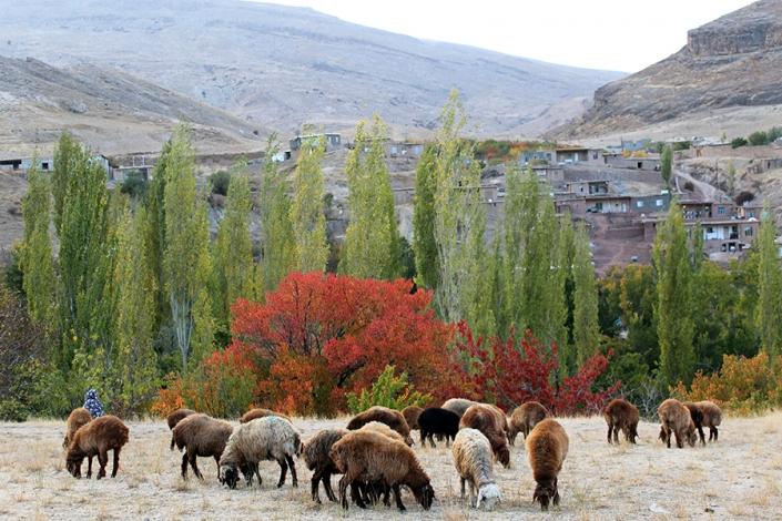 روستای بلغور،از تفرجگاه های مشهد،جاهای دیدنی مشهد