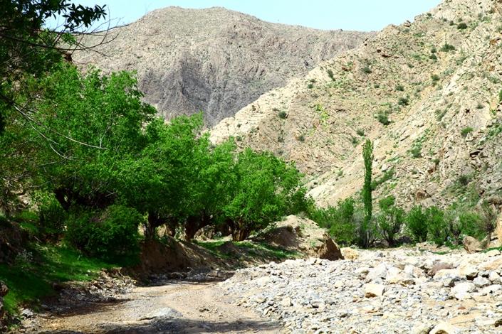 دره روستای سیچ