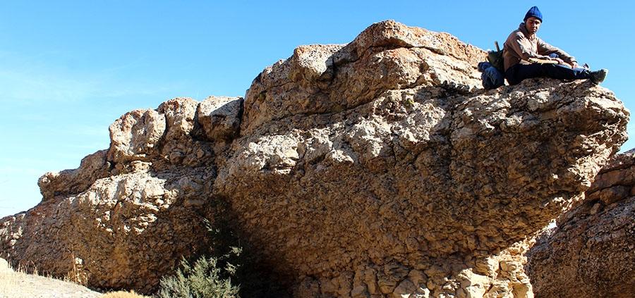 تمساح سنگی دره سیستان